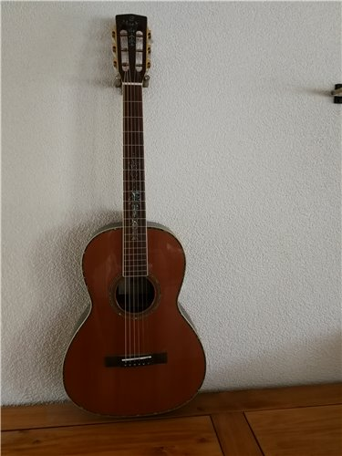 Cort Luce Series Akustik Gitarre Parlor